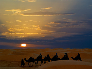 Desert Ride by camel in Tunisia