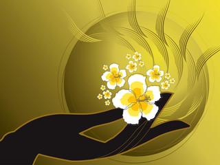 buddha's hand and white hibiscus