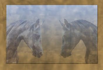 Dramatic horses