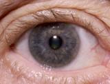 Macro Of Human Eye poster