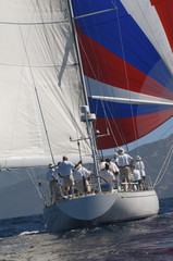 Sailboat During Race