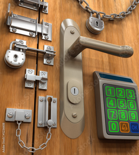 Security Concept. Many lock in only one door.