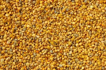 Natural background. Bee pollen, larger magnification.