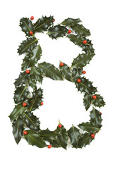 Holly With Berry Letter B