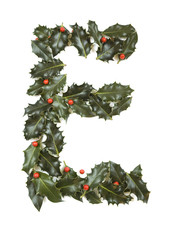 Holly With Berry Letter E