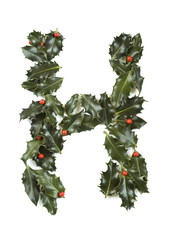 Holly With Berry Letter H