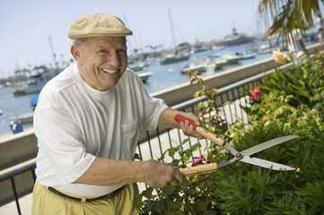 Senior man clipping hedge