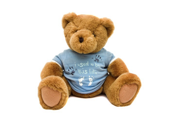 I used to be this little (generic teddy bear)
