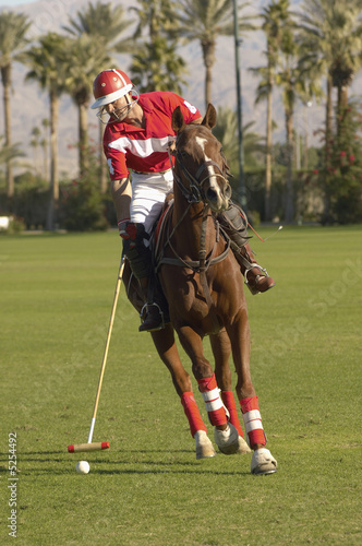 Polo Player Advancing Ball