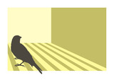 Canary bird silhouette with geometric background poster
