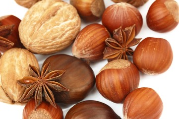 composition of anise, walnut, hazelnut isolated on white backgro