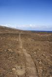 Pathway through rocks. poster