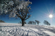 Winterlandschaft 54