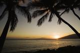 Tropical Hawaiian sunset. poster