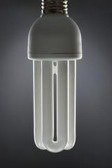 Energy saving light bulb, close up, in studio