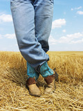 Cowboy standing in field. poster