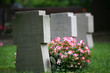 Leinwanddruck Bild - Soldatenfriedhof