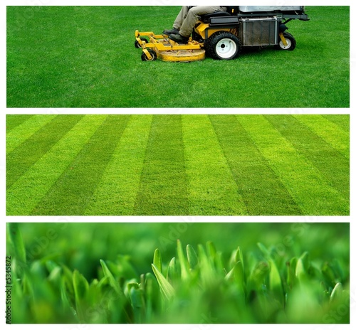 horticulture banners - 5345872