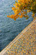 Autumn, yellow leaves and river
