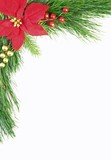 Evergreen Christmas Border poster