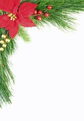 Evergreen Christmas Border
