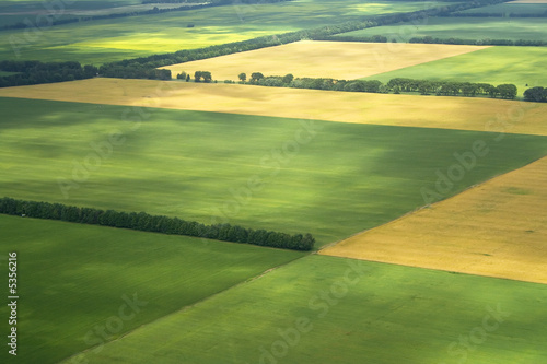 cultivation farm argiculture fields landscape with green blocks