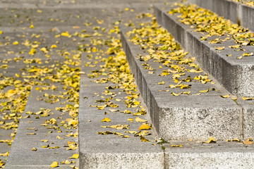 Autumn print over the ancient stone in the city of Avila