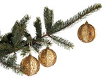 Christmas tree branch with adornments, isolated on white poster