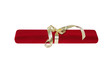 A christmas surprise. The red velvet case whith gold ribbon