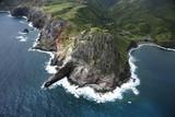 Hawaiian coastline. poster