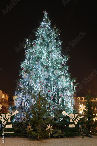Giant outdoor christmas tree decorated with lights - 5375673