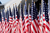 Several American Flags lined up poster