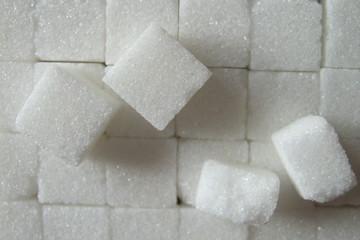 Sucre, zucchero,sugar,Zucker,suiker,azucar