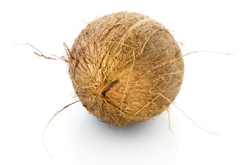 Brown inner nut of a coconut, Cocos nucifera, over white