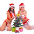 sexy santa helper girls