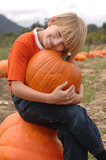 Boy holding a pumpkin found in a pumpkin patch poster