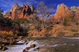 Waterfall in Zion National Park poster