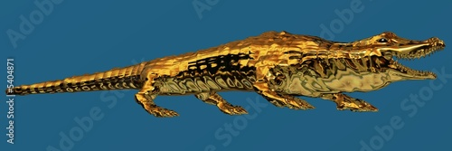 Golden Alligator