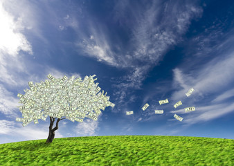Concept of a cash tree of American dollar banknotes