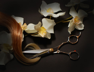 scissors dark