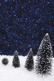 Four evergreen trees in a row with a night background poster