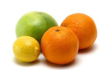 exotic citrus