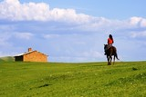 An Asian girl riding a horse returning home. poster