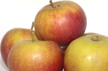 Cox's Apples 1