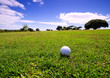 Golf ball on fairway of beautiful golf course