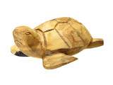 A photo of a handmade turtle made of wood poster