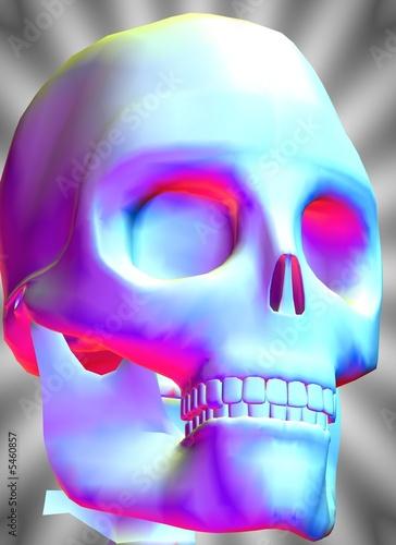 Totenkopfsymbol - Schädel