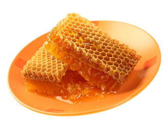 Yellow honeycomb wax cell detail slice on yellow plate