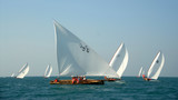 Competing Sailing Dhows In The Middle East poster
