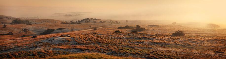Landscape mist panorama